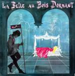 v_perraultla_belle_au_bois_dormant_recto.jpg